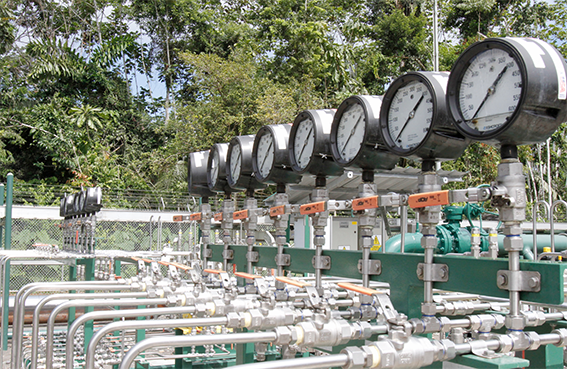 PetroAmazonas Boosted Output 4% In 2019