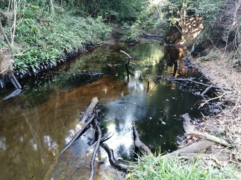 Ecopetrol Says Pipeline Theft Rose 46% Last Year