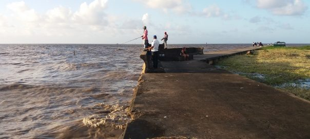 Guyana Mulls Absorbing Energy Dept Into Ministry