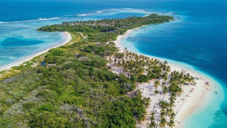 Venezuela Coast Could Take 50 Years To Recover