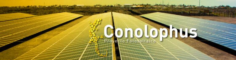 MENRNR Authorizes Cos. For Conolophus Project