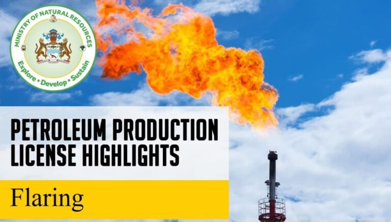 Guyana Lists Flaring Production License Details
