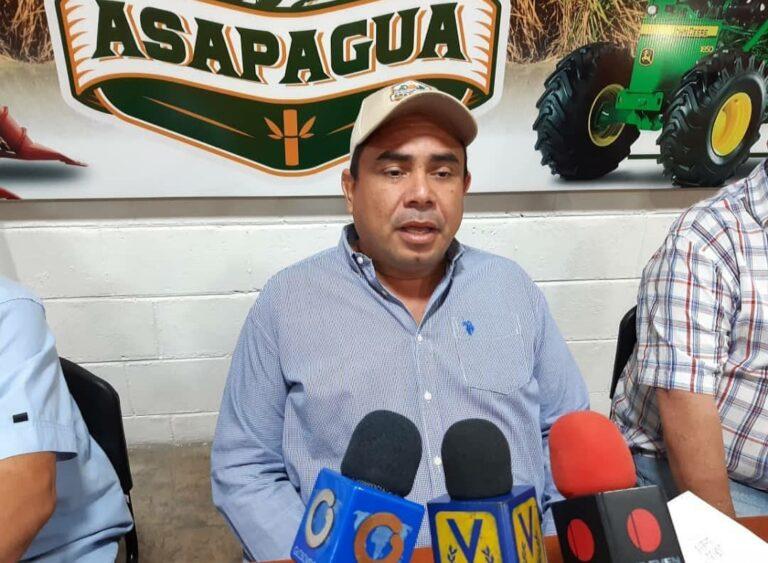 Sugarcane Harvest At Risk In Venezuela's Portuguesa State