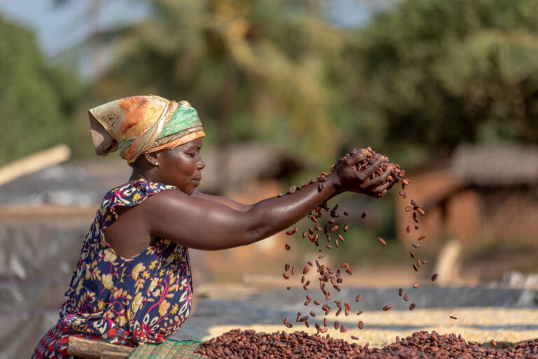 Positive Impact In West Africa Cocoa Communities