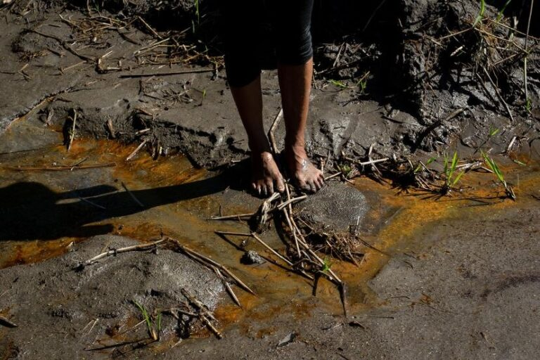 'Triple Pandemic' Devastating Ecuador's Amazon Communities