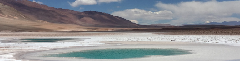 Argentina Lithium To Buy Properties In Salta Province